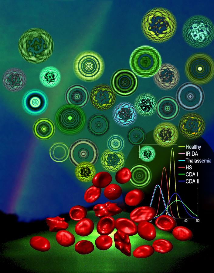 globuli rossi come microlenti